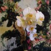 Single Stem Phalaenopsis Orchid styled in Ceramic {As shown $35.00}