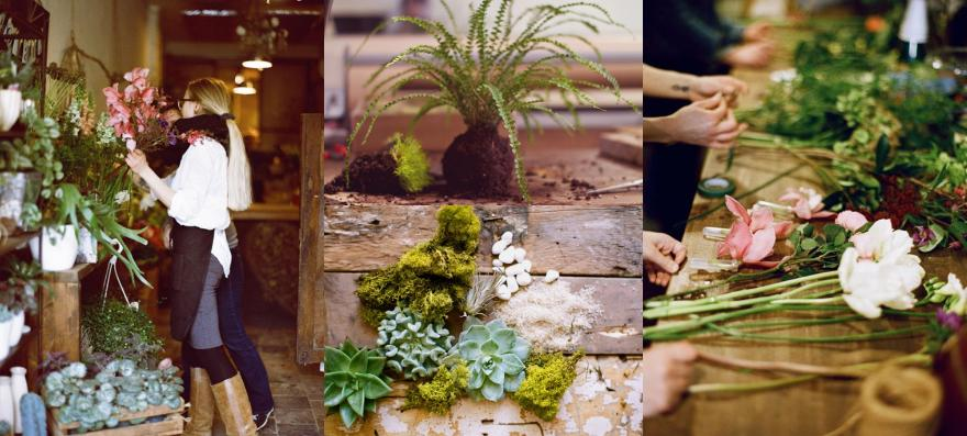 workshops, toronto, flower workshops, terrarium workshops, toronto florist, workshops toronto